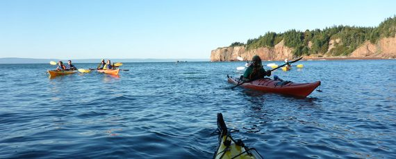 fundy-p1010618